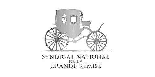 logo sngr